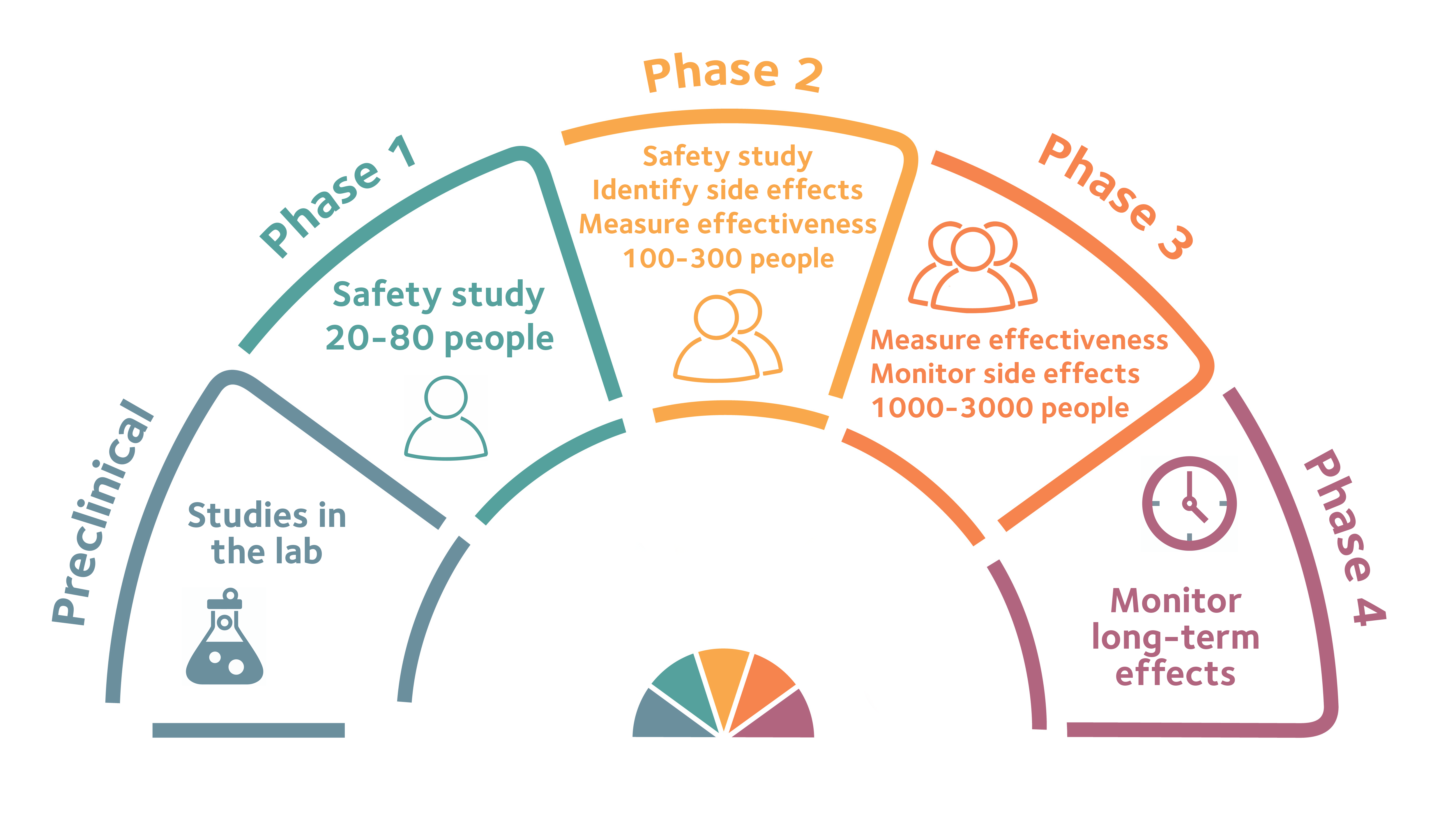 Clinical trial timeline-040221 (1)